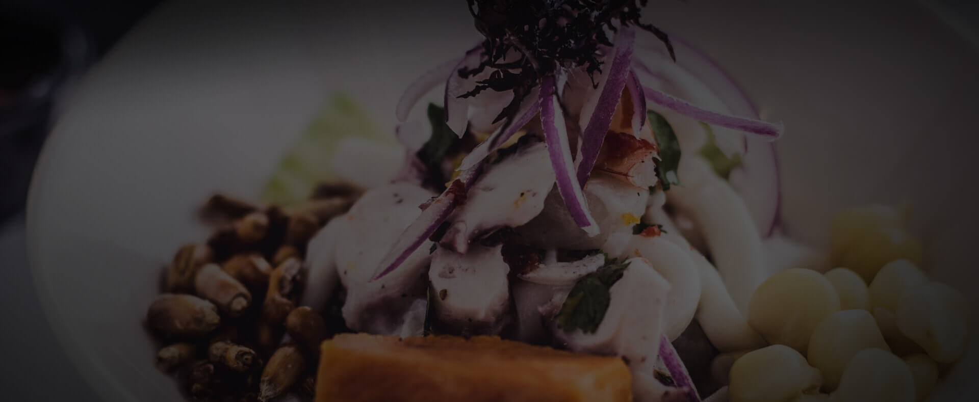 hero-banner-images-ceviche-mixto